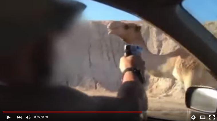 Fotograma del video subido a Youtube.