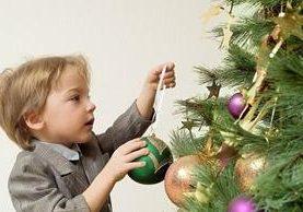 Antes de colocar un pinabete en el hogar debe limpiarse para reducir los ácaros que puede llevar.