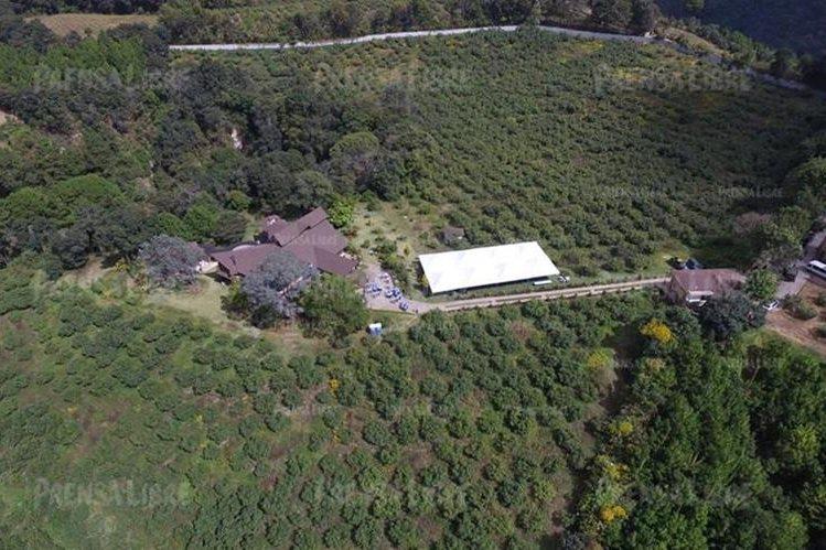 En la propiedad extinguida al expresidente Pérez Molina hay un cultivo de aguacates. (Foto Prensa Libre: Hemeroteca PL)