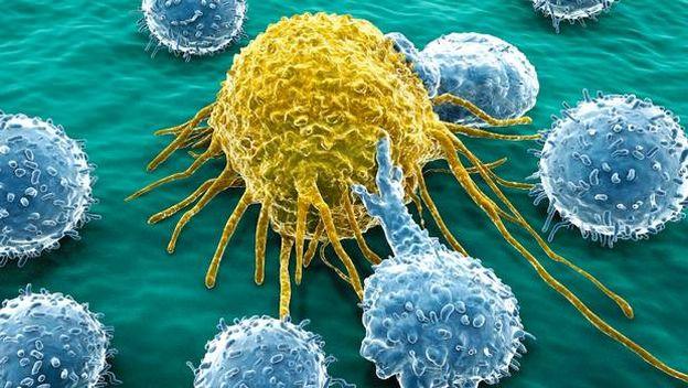 Compuesto ataca directamente a las células que causan el cáncer, incluso las que permanecen ocultas, y no afecta a las células sanas.