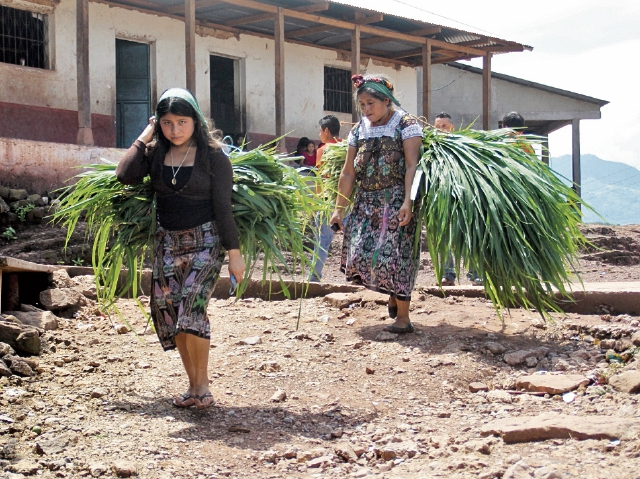 Mujeres de San Andrés Huista, Jacaltenango, cargan pasto que venden, para luego comprar comida.