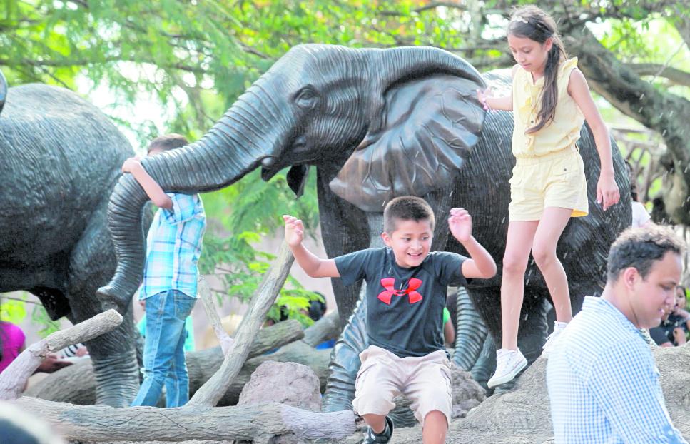 El Zoológico La Aurora también abrió cupo para cursos de vacaciones de medio año. (Foto Prensa Libre: Estuardo Paredes)