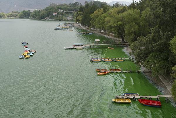 Amsa firmó dos contratos por Q137.8 millones para el saneamiento del lago con una empresa israelí. (Foto Prensa Libre: Hemeroteca PL)