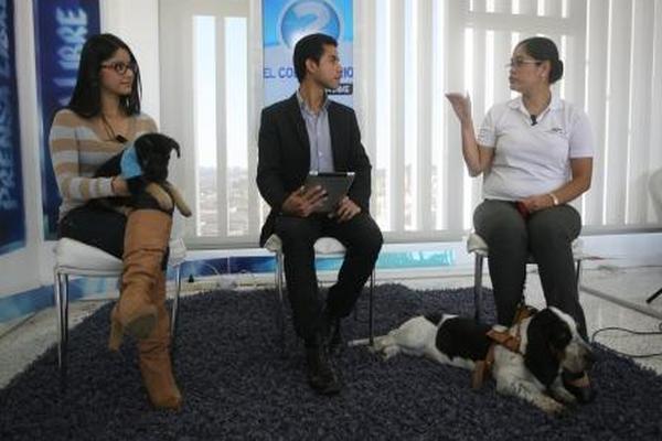 <p>Las médicas veterinarias Claudia Hernández y Andrea Polanco, en El Consultorio</p>