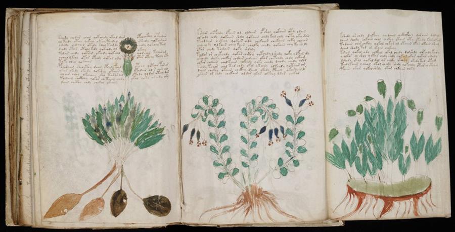Sin historiadores del hebreo antiguo, el significado del manuscrito seguirá siendo un misterio. (Foto Prensa Libre: Folio.ca)