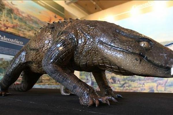 <p>Reptiles utilizaron las letrinas  antes que los mamíferos</p>