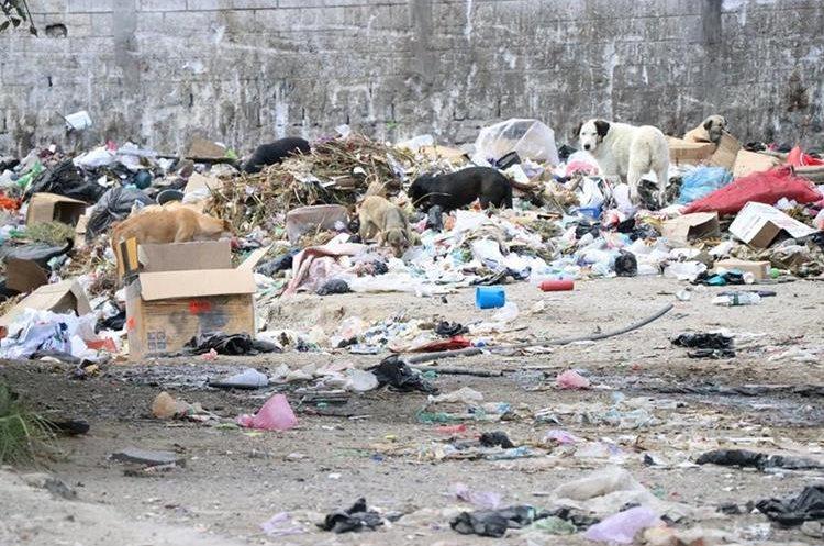 En el kilómetro 191 de la ruta Interamericana, entre Totonicapán y Huehuetenango, se observa la basura acumulada afuera y dentro de la construcción. (Foto Prensa Libre: María José Longo)