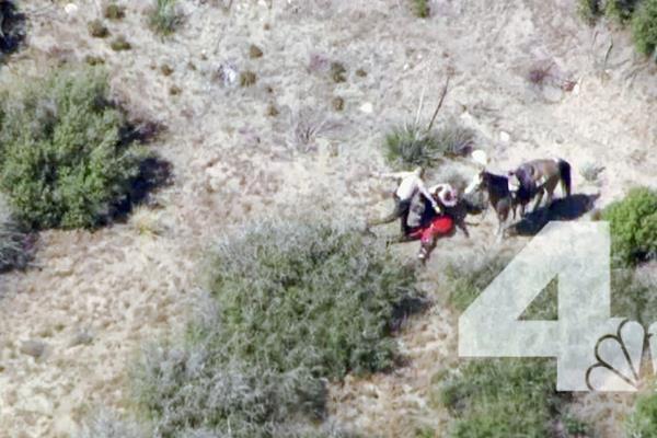 Video muestra a dos policías que patean y dan puñetazos a sospechoso.(Foto Prensa Libre:AP)