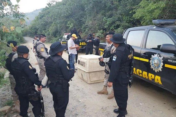 Agentes antinarcóticos rescatan a la leona en Zacapa. (Foto Prensa Libre: cortes)
