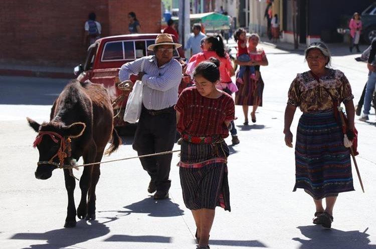 Una mujer es obligada a llevar por las calles del pueblo un toro que supuestamente había robado. (Foto Prensa Libre: Héctor Cordero)
