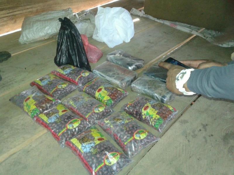 Los falsos frijoles estaban rellenos de cocaína y distribuidos en distintos paquetes. (Fotos: laestrella.com.pa).