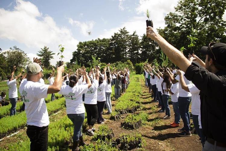 El domingo 26 de junio se llevó a cabo la primera jornada del proyecto El día del millón de árboles. (Foto Prensa Libre: Gildaneliz Barrientos).