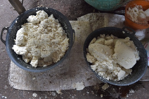 Residuos sólidos de queso de soya en una casa donde producen tofu. (AFP).