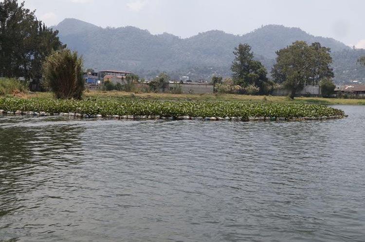 Trampas para retener la ninfa fueron colocadas en la laguna, un lugar turístico en Alta Verapaz. (Foto Prensa Libre: Eduardo Sam)