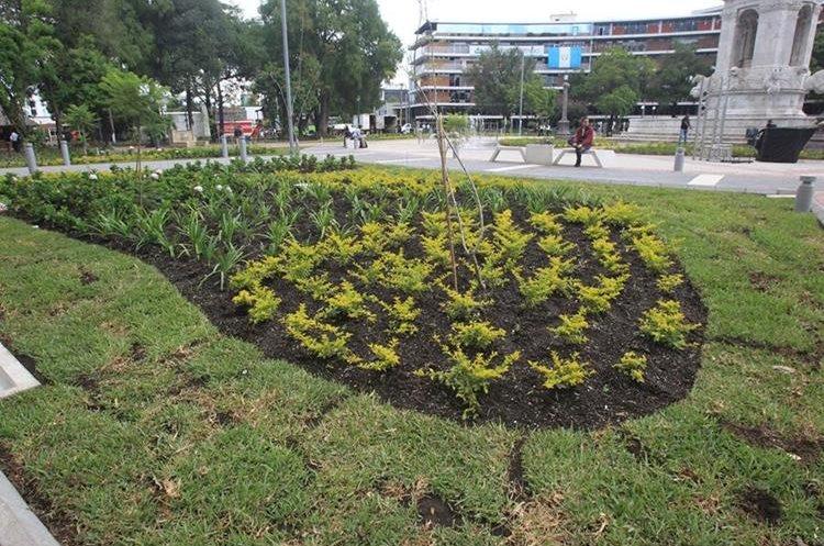 Varias áreas fueron jardinazadas. (Foto Prensa Libre: Esbin García).
