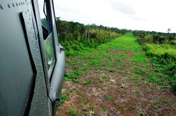 En diciembre del 2013 el Ejército, localizó en el Parque Nacional Laguna del Tigre, San Andrés, dos pistas de aterrizaje clandestinas. (Foto, Prensa Libre: Hemeroteca PL)