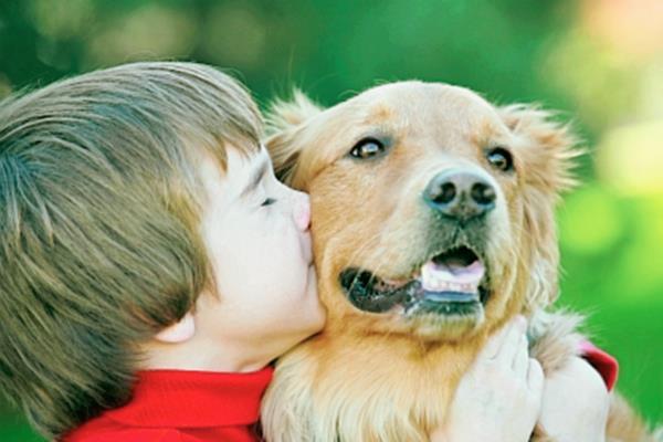 Es importante tomar en cuenta las habilidades de cuidar a los animales, para elegir la especie idónea como mascota. (Foto Prensa Libre, tomada de mastorrencito.com)