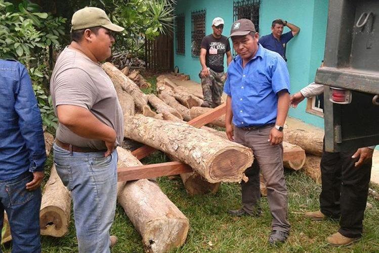 Troncos de rosul son incautados por personal del Conap en Poptún, Petén. (Foto Prensa Libre: Walfredo Obando)