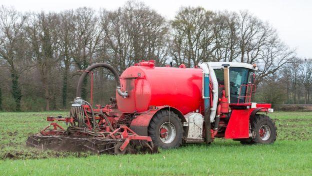 El uso de fertilizantes aumenta dramáticamente el rendimiento de los cultivos. THINKSTOCK