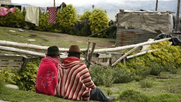 A nivel local se promovió la participación en el estudio con una campaña de marketing llamada Lulun Project, que hace referencia a la palabra quechua para huevo. (Getty Images).