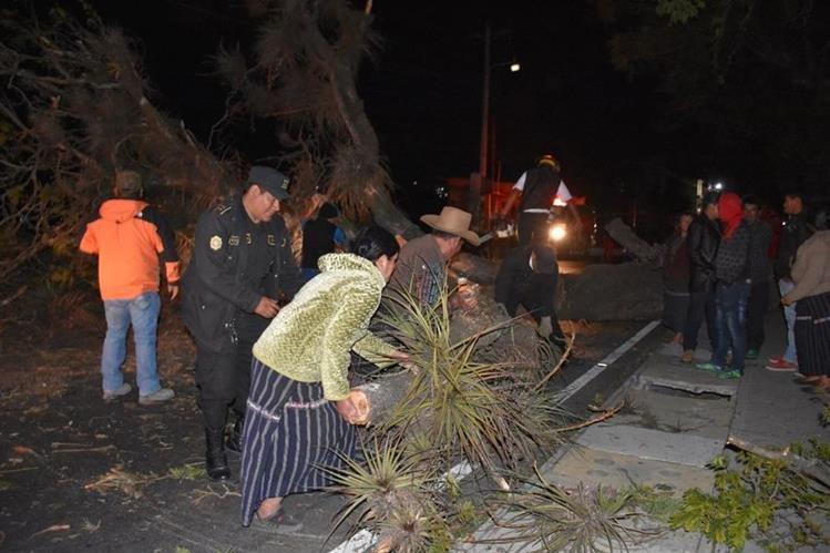 Fuerte viento derribó un árbol en la cabecera de Sololá. (Foto Prensa Libre: Édgar Sáenz).
