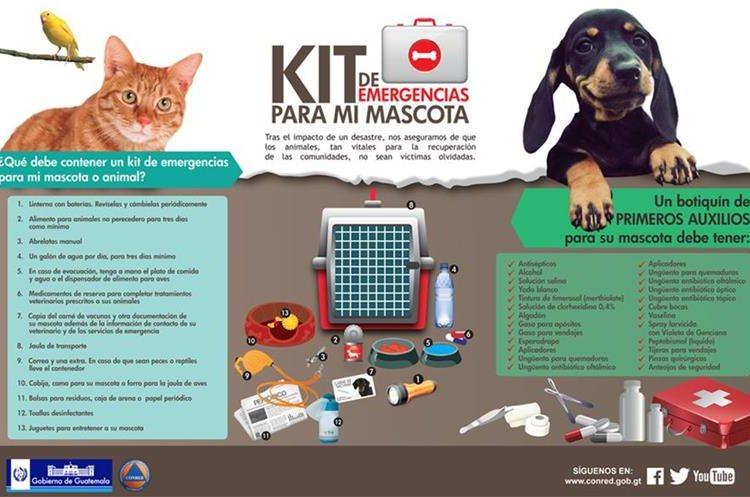Si usted tiene mascotas, es importante que también piense en sus necesidades en una emergencia. (Foto Prensa Libre: CONRED).