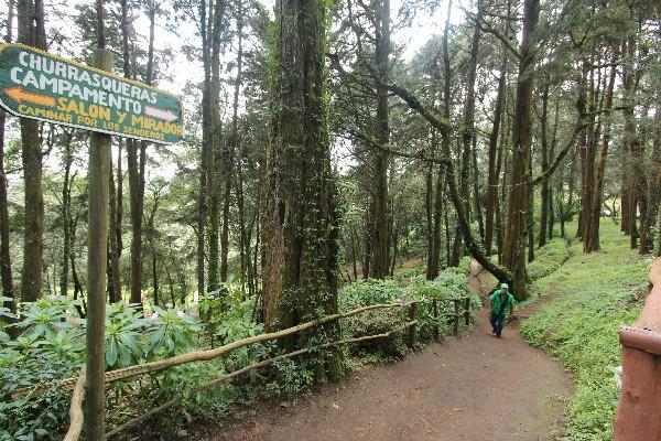 Autoridades  que integrarán  la mancomunidad planean  proteger  los manantiales  y el  bosque   del cerro Alux.