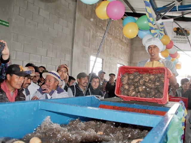La nueva planta de lavado de papa generará diez empleos directos. (Foto Prensa Libre: Hemeroteca PL)
