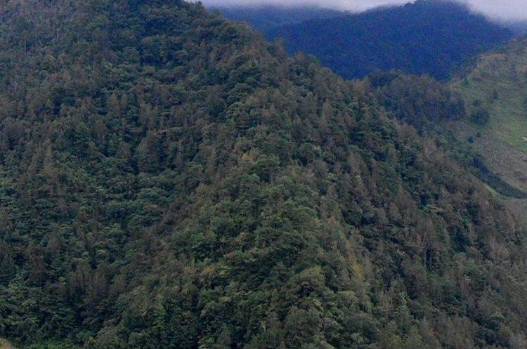 """El Cerro Montecristo tiene vistas impresionantes, que dan tranquilidad en un lugar único.&nbsp;<span style=""""font-family: arial, sans-serif; font-size: 12.8px; text-align: justify;"""">PRENSA LIBRE/ MARIO MORALES</span>"""