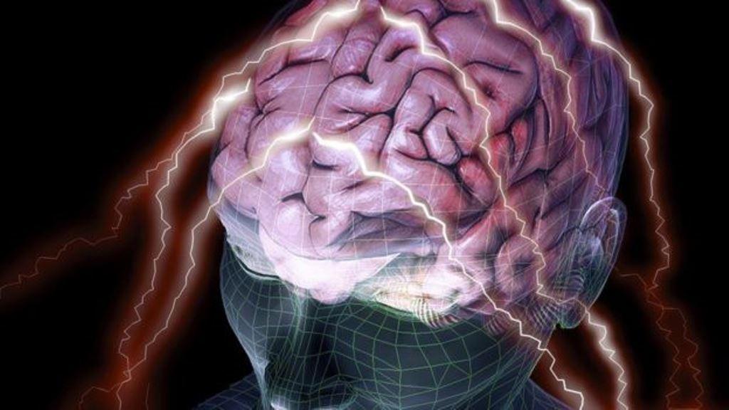 ¿Cuanto de tu personalidad está definida por la estructura de tu cerebro? (SPL)