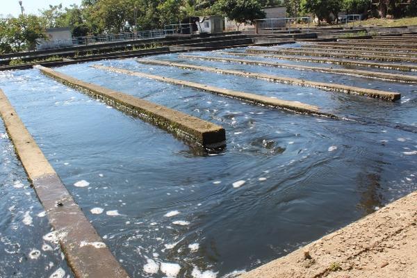 <p>Tanque de captación en el cual cae agua sin purificar, debido a los problemas en el sistema. (Foto Prensa Libre: Danilo López)</p>