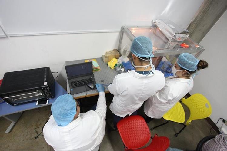 El primer satélite guatemalteco, el CubeSat, contó con la colaboración de varios académicos (Foto: Hemeroteca PL).