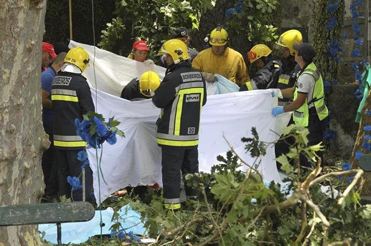 Rescatistas trabajan en el lugar donde 11 personas murieron al ser aplastadas por un árbol que les cayó encima, en la isla de Madeira.Portugal.(EFE).