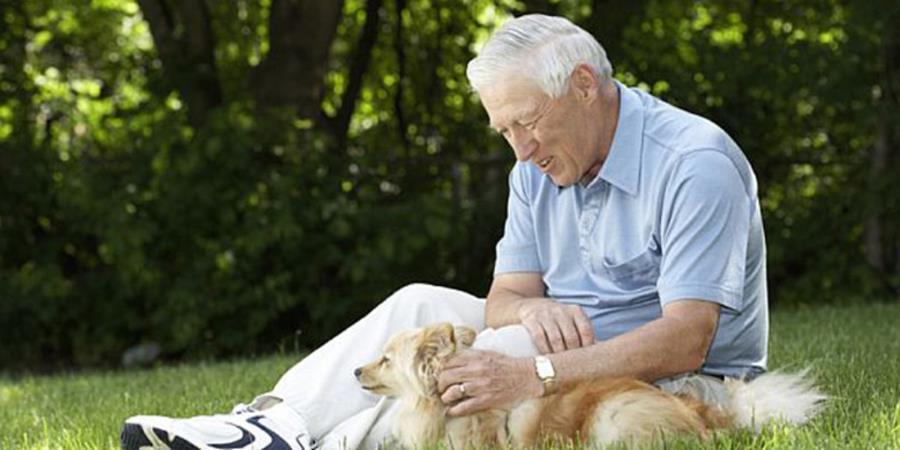 Expertos aseguran que el secreto del amor entre un perro y un humano está en la mirada. (Foto Prensa Libre: Hemeroteca PL)