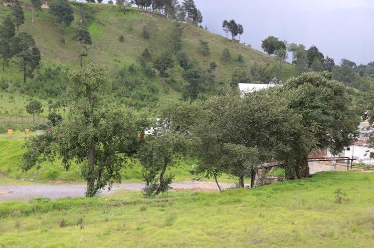 Este es el terreno que la comuna desea adquirir pero su precio, según avalúo, es inferior a lo que pide la empresa propietaria. (Foto Prensa Libre: María Longo)