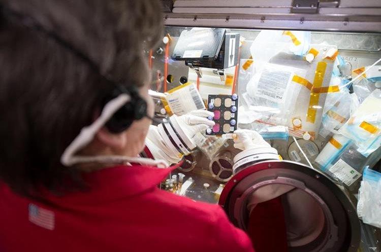 La astronauta Peggy Whitson trabaja con Azonafide, la molécula que posiblemente ofrezca una cura al cáncer en humanos. (Foto Prensa Libre: NASA)