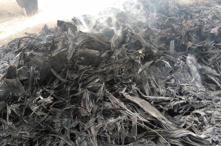La quema de los ramos se hace quince días antes del Miércoles de Ceniza.