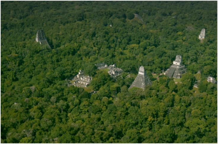 La Fundación Pacunam realizó un sobrevuelo de 2 mil 100 kilómetros cuadros sobre la Biosfera Maya en Petén. (Foto Prensa Libre: Cortesía NatGeo)