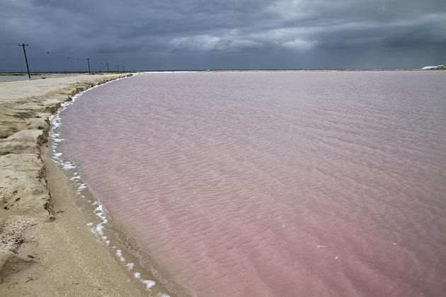 La playa color rosa está ubicada en Yucatán, México. (Foto Prensa Libre: yucatan.for91days.com)
