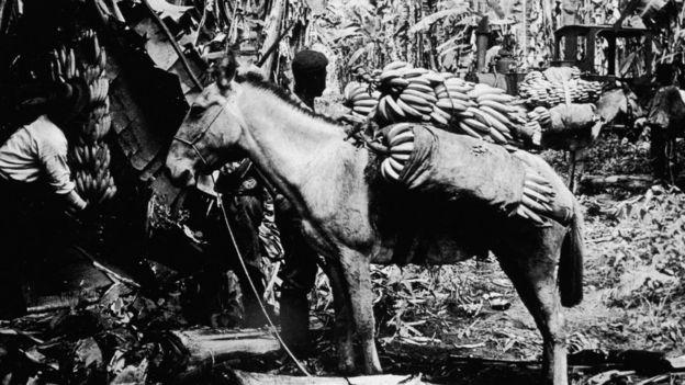 Cuando O. Henry estuvo en Honduras, la United Fruit Company todavía no había sido fundada. HULTON ARCHIVE