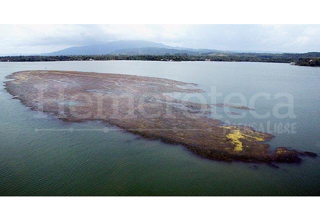 Vistas desde el aire parecen simples manchas, pero en realidad son grandes formaciones de Hydrilla verticillata, la cual puede matar al lago y sus especies. (Foto: Hemeroteca PL)