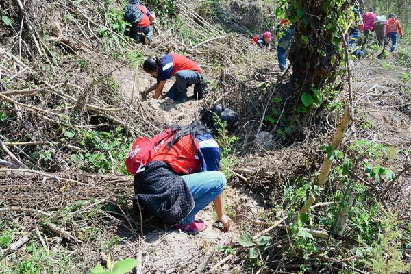 Estudiantes plantan árboles en un terreno de la EFA, en la cabecera de Sololá. (Foto Prensa Libre: Édgar Sáenz)