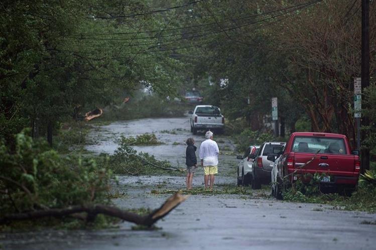 Árboles caídos dejó el paso del huracán Florence en Wilmington, Carolina del Norte. (Foto Prensa Libre: AFP)