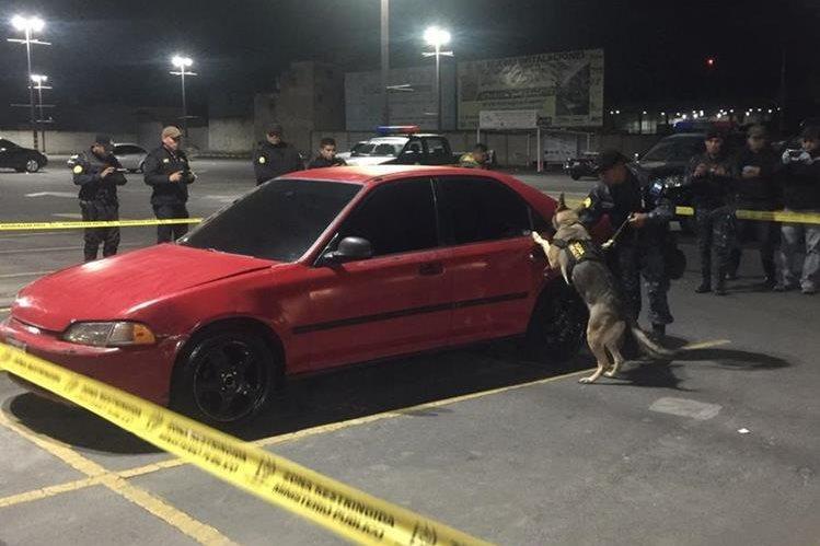 Un perro entrenado busca ilícitos en automóvil abandonado en la zona 3 de Xela. (Foto Prensa Libre: PNC)