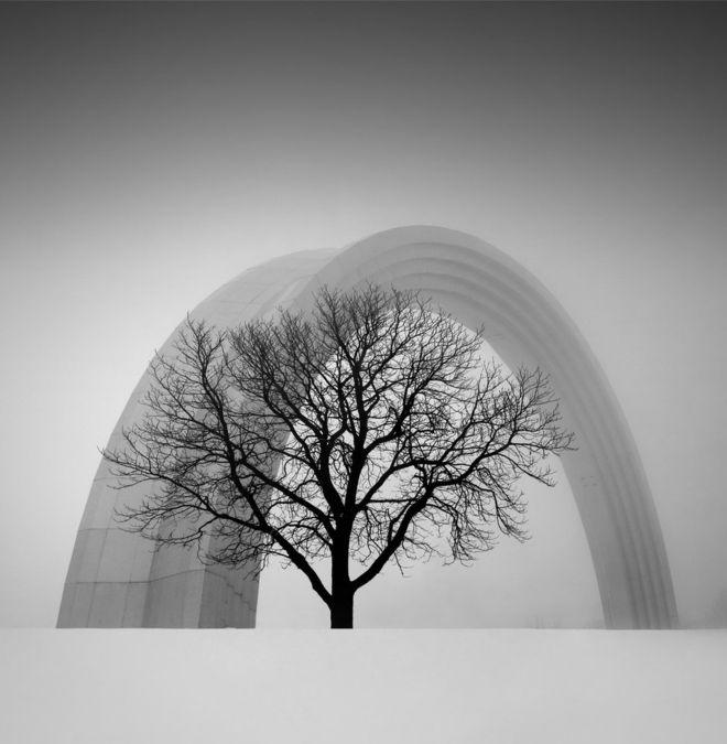 """""""La foto muestra la combinación entre naturaleza y arquitectura, la armonía entre un arco de titanio y un árbol"""", dice su autor, Oleksandr Nesterovskyi. La tomó en Kiev, Ucrania. OLEKSANDR NESTEROVSKYI"""