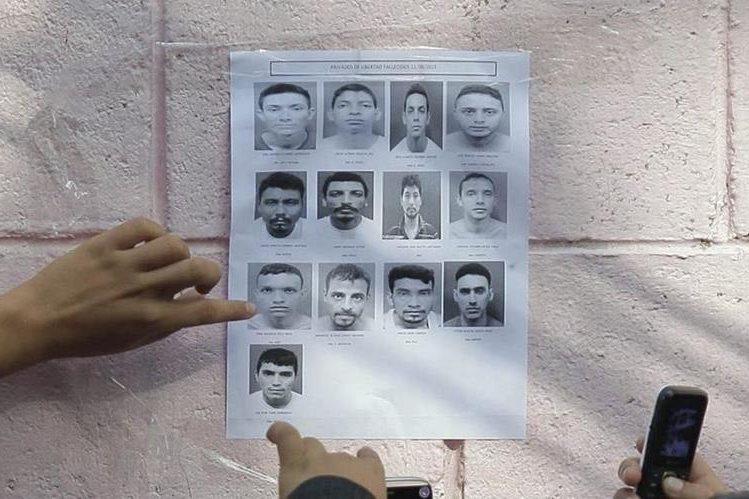 <em>La Policía distribuyó las fotografísa de los 14 pandilleros que guardaban prisión en el penal de Quezaltepeque y fueron asesinados el sábado último. (Foto Prensa Libre: EFE).</em>