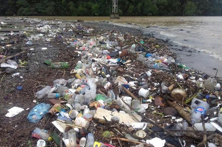 Las correntadas de los ríos han arrastrado grandes cantidades de basura a la playa pública de Santo Tomás de Castilla. (Foto Prensa Libre: Dony Stewart)
