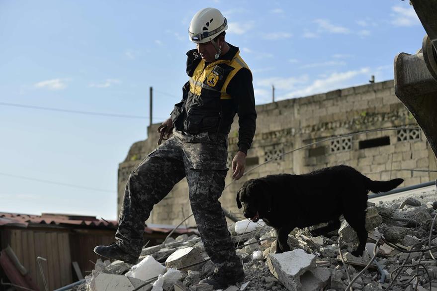 Un perro ubicado en lo que era su casa en Pederanales, Ecuador. (Foto Prensa Libre: AFP).