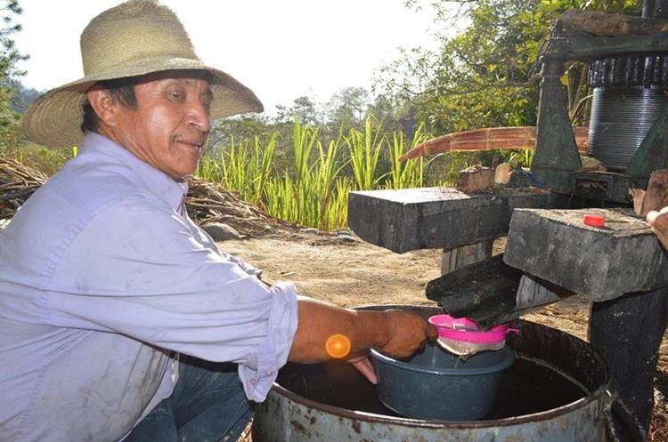 La molienda de caña de azúcar en Esquipulas, Chiquimula, comienza en enero y concluye en mayo. Es un oficio de tradición familiar. (Foto Prensa Libre: Mario Morales)