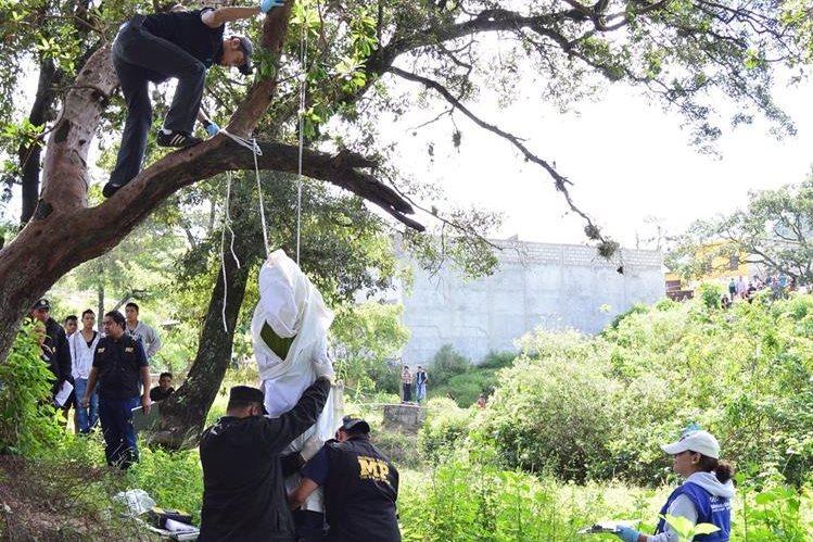 Autoridades bajan el cadáver del árbol en el que se encontraba colgado. (Foto Prensa Libre: Mike Castillo)